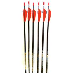 Стрелы для лука Easton Carbon One 500 - 6 шт.